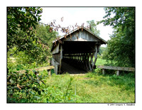 Canal Greenway Covered Bridge